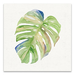 Tropical Leaf II Canvas Art Print