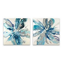 Flower Explosion Canvas Art Prints, Set of 2