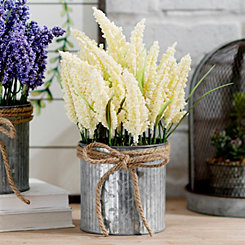 White Lavender in Metal Tin, 11 in.