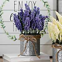 Lavender in Metal Tin, 11 in.