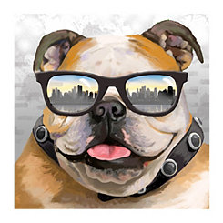 Bulldog with Sunglasses Canvas Art Print