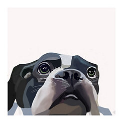 Curious Terrier Canvas Art Print