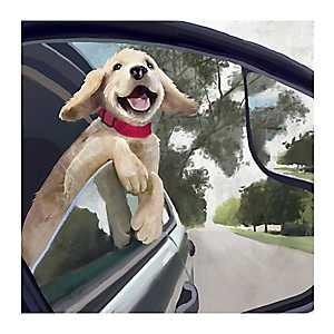 Motor Pup Canvas Art Print