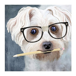 Smarty Pants Canvas Art Print