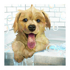 Squeaky Clean Canvas Art Print