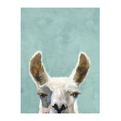 Live Laugh Llama Canvas Art Print