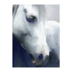 Blue Horse Canvas Art Print