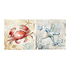Sea Life Canvas Art Prints, Set of 2