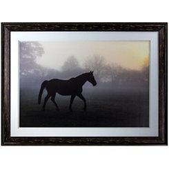 Misty Paddock Horse Framed Art Print