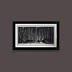 Snow Dancer Winter Horses Framed Art Print
