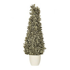 Dusty Bayleaf Cone Topiary, 39 in.