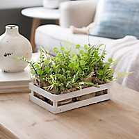 Succulent and Grass Arrangement in Wood Tray