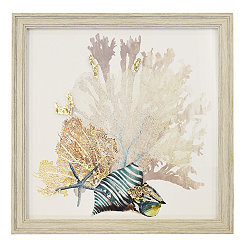 Coral & Shells I Framed Art Print