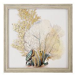 Coral & Shells II Framed Art Print