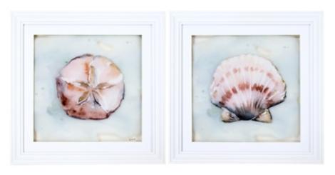 Ocean Finds Framed Art Prints, Set of 2