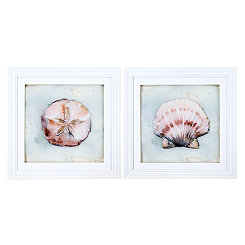 Ocean Finds Framed Art Prints, Set of 2