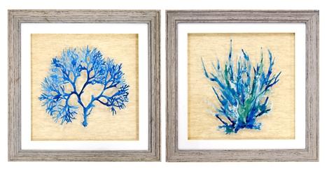 Royal Coral Framed Art Prints, Set of 2