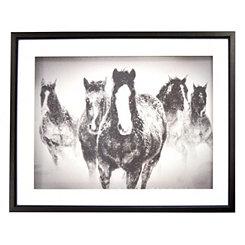 Winter Rumble Horses Shadowbox Framed Art Print