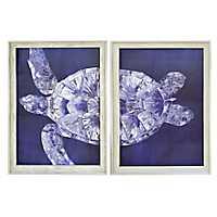 Blue Turtle Split Framed Art Prints, Set of 2