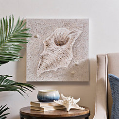 Sealife Shell Canvas Art Print