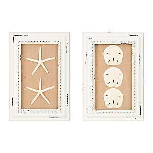 Starfish and Sand Dollar Shadowboxes, Set of 2
