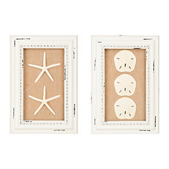 Starfish and Sand Dollar Shadowboxes, Set of 2