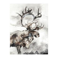 Wild Moose Canvas Art Print
