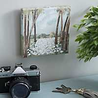 Cotton View Canvas Art Print