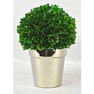Boxwood Arrangement in Silver Planter, 9.4 in.