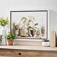 Greenhouse Orchids Framed Canvas Art Print