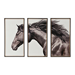 Free Again Horse Triptych Framed Art Prints