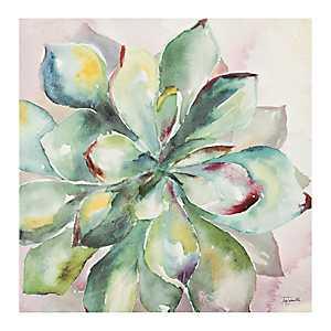 Watercolor Succulent I Canvas Art Print