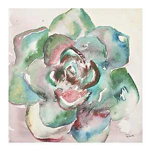 Watercolor Succulent IV Canvas Art Print