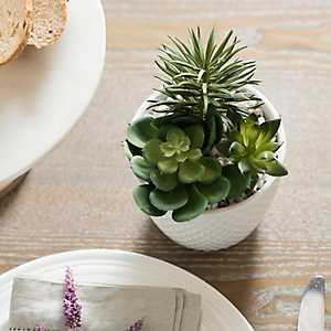 Succulent Arrangement in White Diamond Planter