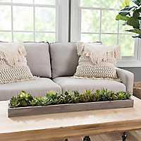Succulents in Wooden Runner