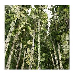 Deep Forest Canvas Art Print