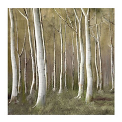 Abstract Birch Canvas Art Print