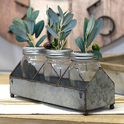 Glass Jars in Metal Tray, Set of 4