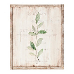 Botanical II Wood Panel Framed Art Print