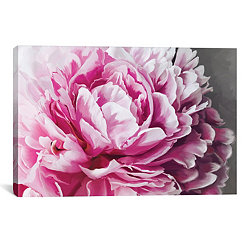 Peony Blush Canvas Art Print