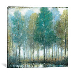 Somber Mist Canvas Art Print