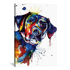 Splatter Black Lab Canvas Art Print
