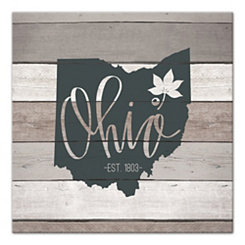 Ohio Shiplap Canvas Art Print
