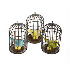 Bird Cages with Hand-Painted Birds, Set of 3