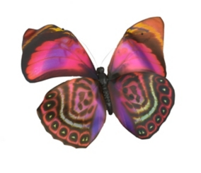Pink Paper Butterfly