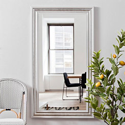 Brushed Silver Framed Mirror, 31.5x55.5 in.