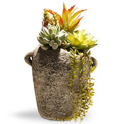 Succulent Arrangement in Gray Cement Pot