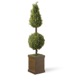 Cone and Ball Topiary in Wood Planter, 47 in.