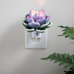 Succulent Night Light