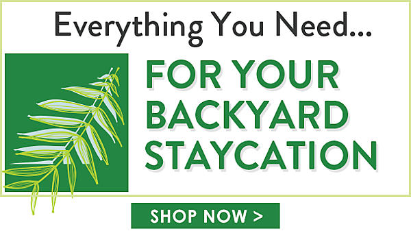 Everything You Need For Your Backyard Staycation - Shop Now